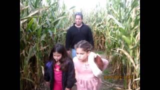 Souza's corn maze 2012