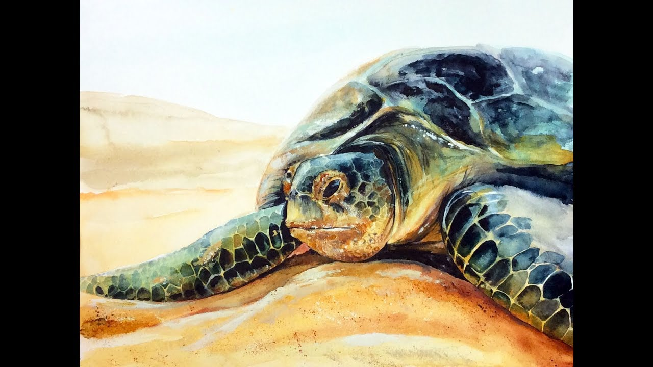 Green Sea Turtle In Watercolors Painting Demonstration
