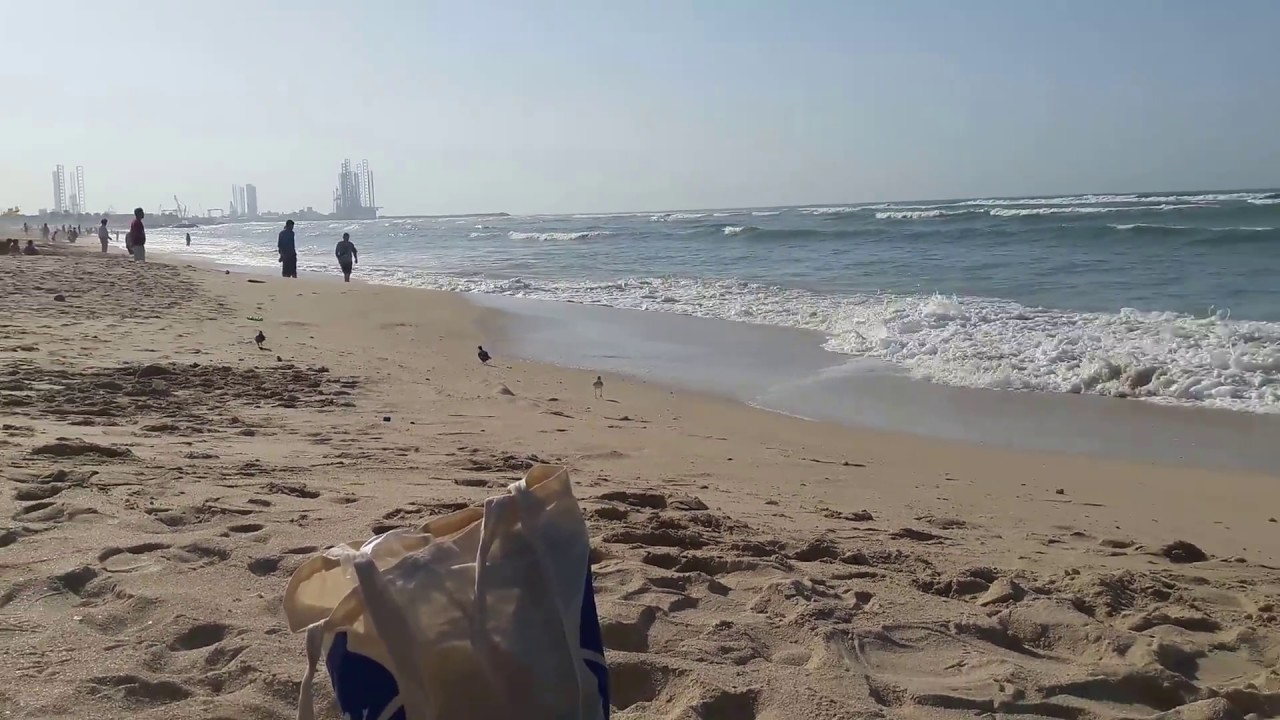 Tropical Island Beach Ambience Sound: طبيعة خلابة على شاطئ بحر الشارقة