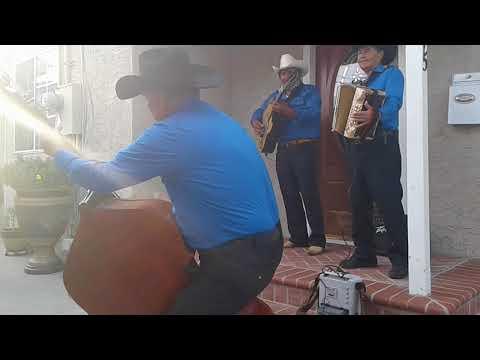 T Tololoche Chicoteado Lalo Díaz