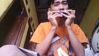 Bunda cover harmonica Mp3