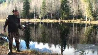 Bowhunting in Finland