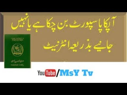 How To Check Your Pakistani  Passport Online| MsY Tv| in Urd