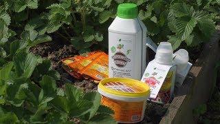 Биопрепараты для подкормки и защиты растений
