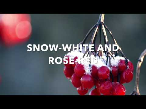 Snow White and Rose Red (audiobook)