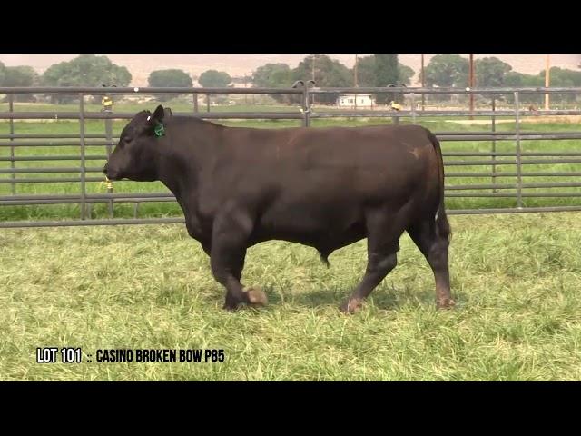 Dal Porto Livestock and Rancho Casino Lot 101
