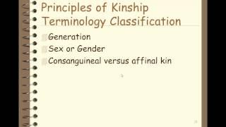 Kinship and Typ