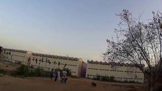IHL267. О Маха Шиваратри в ашраме Саи Бабы и в Индии.  Новый акомодейшен  Собачки ждут кормилицу