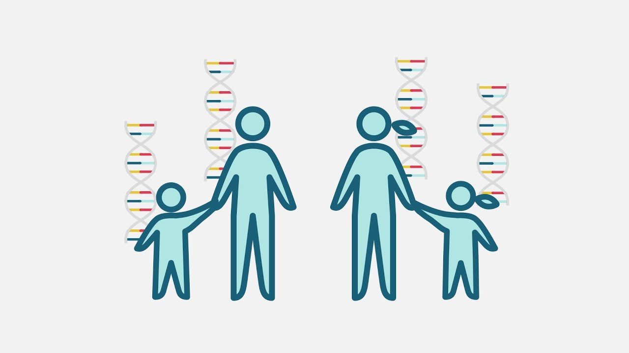 Benefits and limitations of genetic testing - YouTube