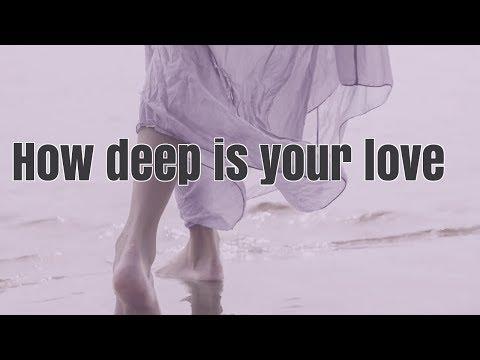 Calvin Harris & Disciples - How deep is your love (dj WooGy Chillout mix) - LinijaStila  2018