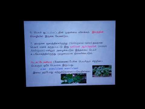 Botany taxonomy of angiosperm - ICBN