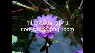 MEMORY  (RUTH SAHANAYA) dengan lirik