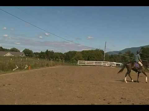 Africa's first arena canter