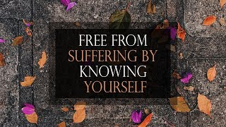 Free From Suffering by Knowing Yourself