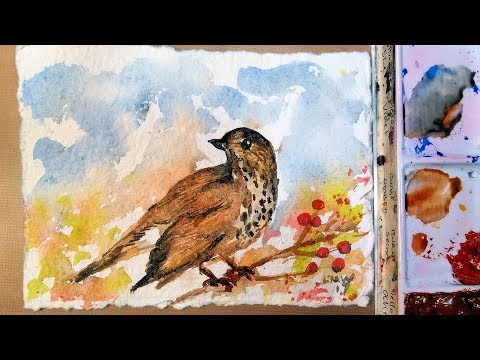 Easy bird to paint in watercolor (loose style)
