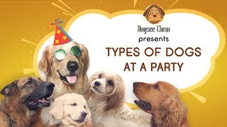 Types of Dogs at a Party