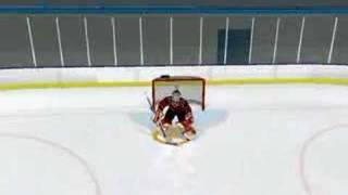 nhl 08 goalies fall