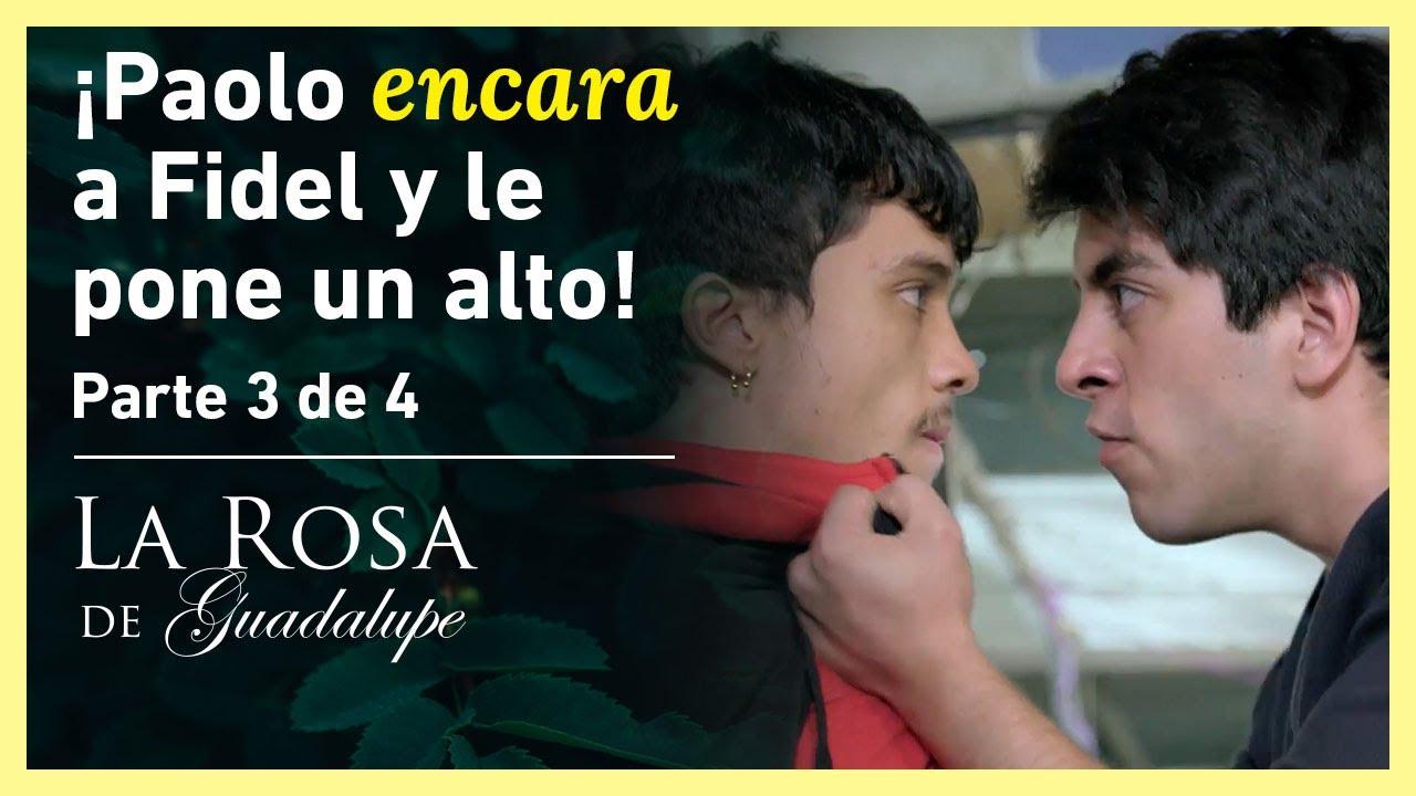 Download La Rosa de Guadalupe 3/4: ¡Melina le asegura a Paolo que su hijo es de Fidel! | El premio