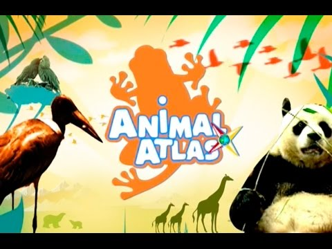 Animal Atlas Show Opener