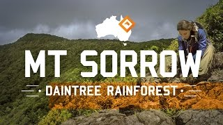 Hiking Australia - Mt Sorrow, Daintree Rainforest