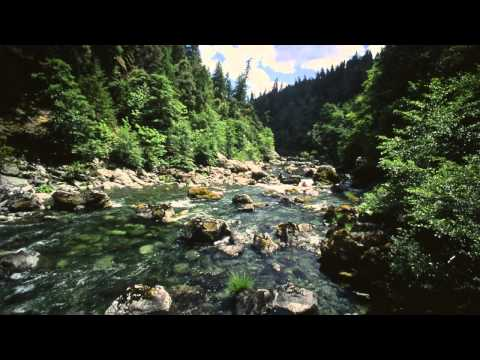 Oregon Rivers - Our Natural World Series