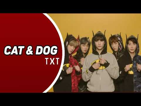 txt---cat-&-dog-(ringtone)-|-download