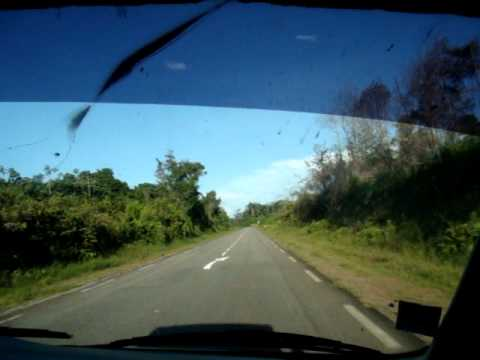 Día 9: En ruta hacia Cayenne (Guayana Francesa)