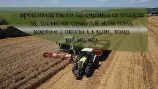 Спад в производството на  житни култури в Украйна