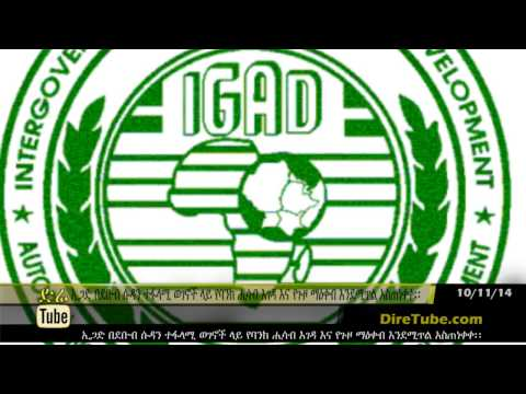 IGAD threatened South Sudanese warring factions with asset freezes and travel bans