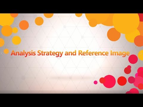 Analysis Strategy and Reference Image