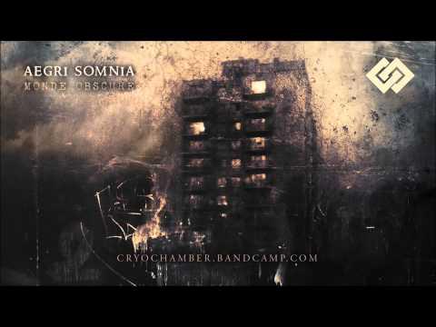 Aegri Somnia  Portal I