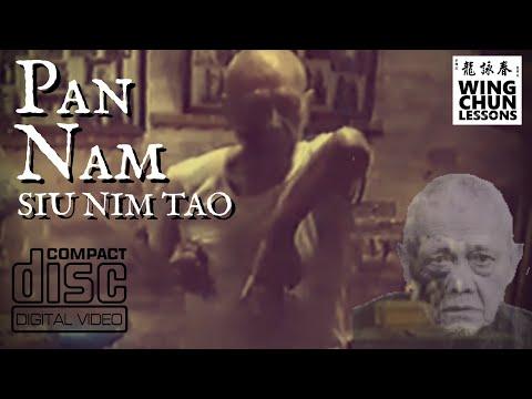 Pan Nam Wing Chun Siu Nim Tao with Notes