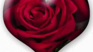 Elvs Presley-When the snow is on the Roses.wmv