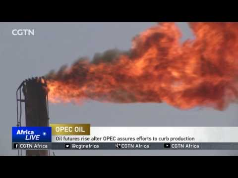Oil futures rise after OPEC assures efforts to curb production