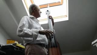 ns design nxt 4 string double bass i ll take les john scofield