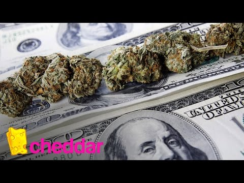 The Cannabis Stocks to Invest in Now | Cheddar