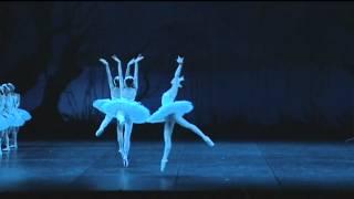 Swan Lake Jose Martinez with Tokyo Ballet