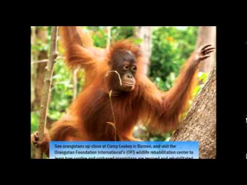 2014 09 17 13 59 National Geographic Orion 2015 Expeditions