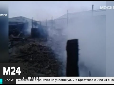 В подмосковном Раменском восемь человек погибли при пожаре - Москва 24