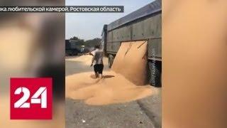Ростовский водитель посыпал трассу пшеницей назло инспекторам ДПС - Россия 24