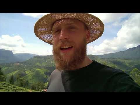 History of Ceylon Tea - British guy travel in Sri Lanka 🇱🇰🇬🇧
