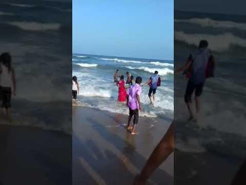 Ray family in marine Beach Chennai