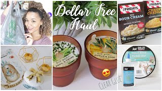 Dollar Tree Haul October 2018