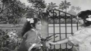 ArikathuAnjhan || College Girl || Malayalam Film Song