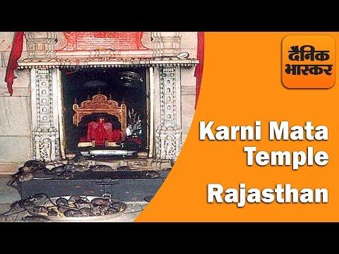 Karni Mata Mandir - Temple of Rats, Rajasthan - History & Facts