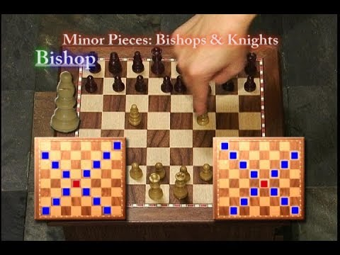 How to Play Chess (Biff's Gaming Videos)
