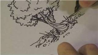 Drawing Lessons : How to Draw Olive Trees
