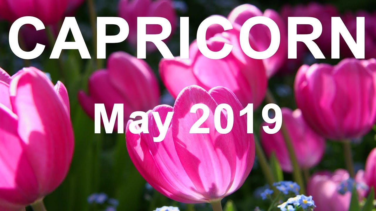 CAPRICORN MAY 2019 - IN YOUR ELEMENT CAPRICORN! - Tarot Reading