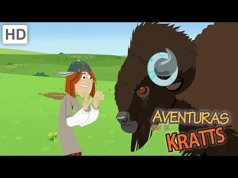aventuras-com-os-kratts---a-melhor-experiência-de-vida-selvagem-(1-hora!)
