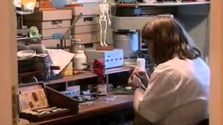 BBC Химия тела Часть 3